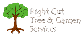 Right Cut Tree & Garden Services